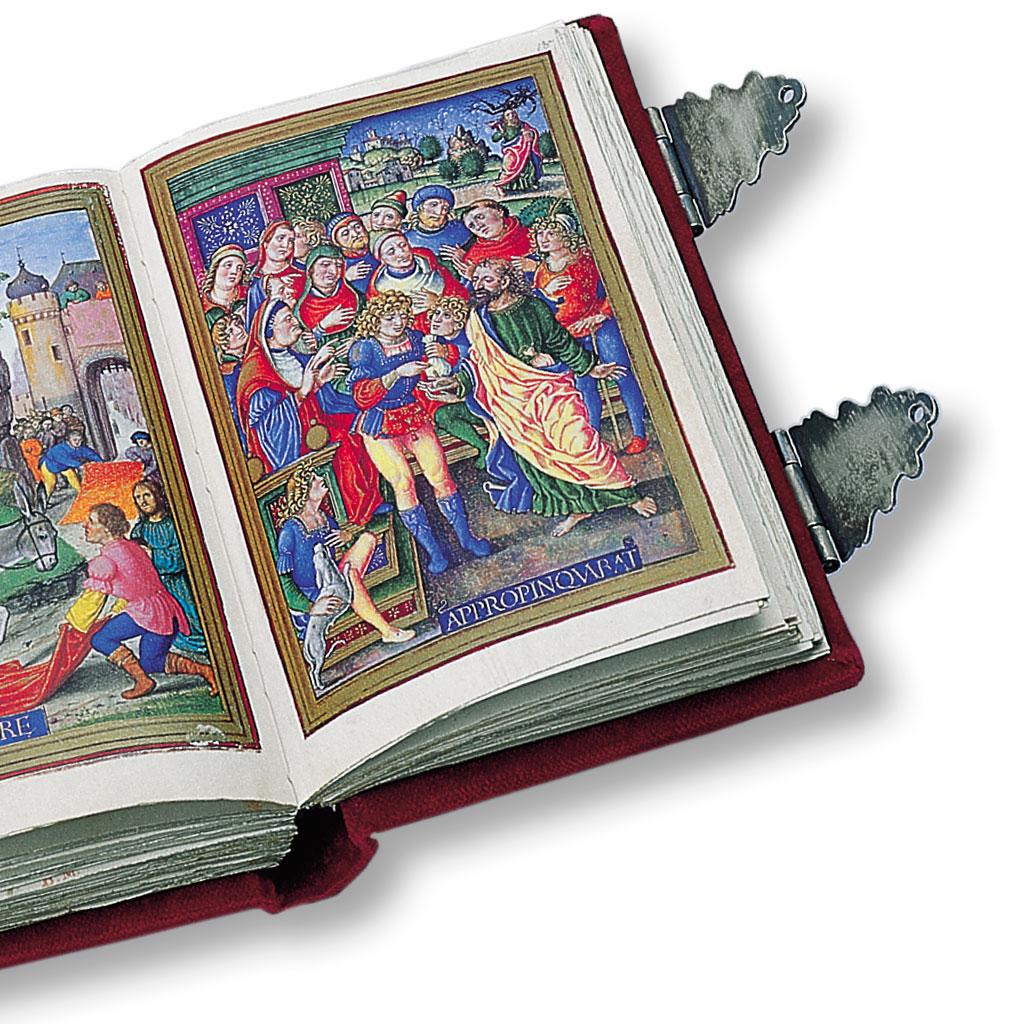 Sforza C